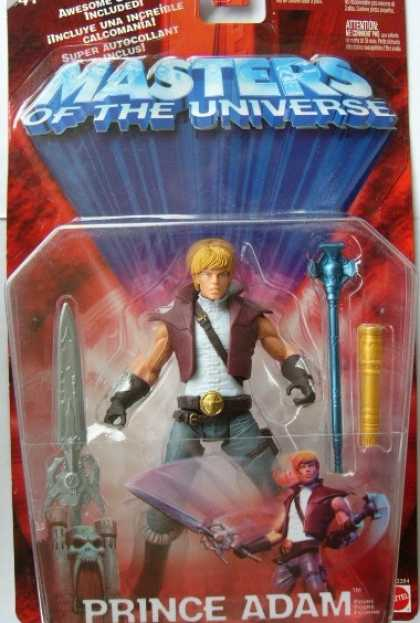 Action Figure Boxes - Masters of the Universe: Prince Adam