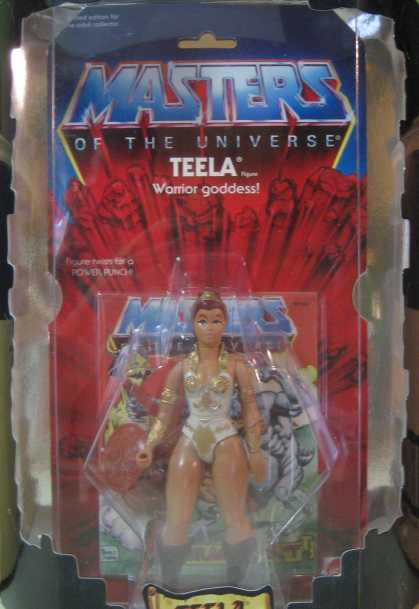 Action Figure Boxes - Masters of the Universe: Teela