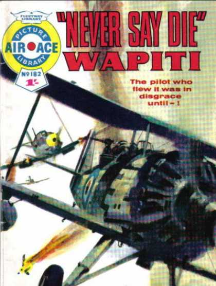 Air Ace Picture Library 182