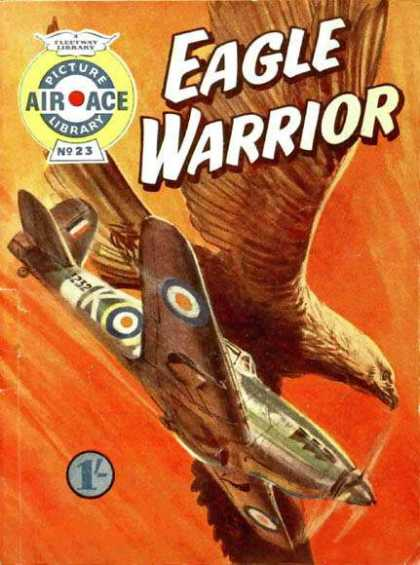 Air Ace Picture Library 23