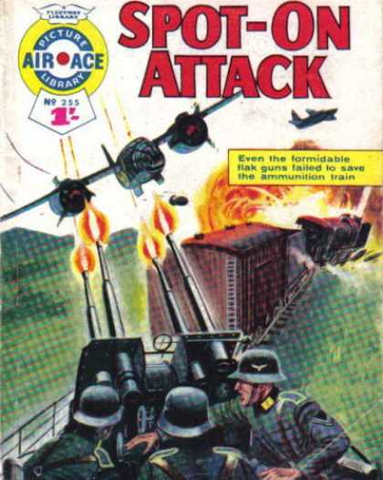 Air Ace Picture Library 255