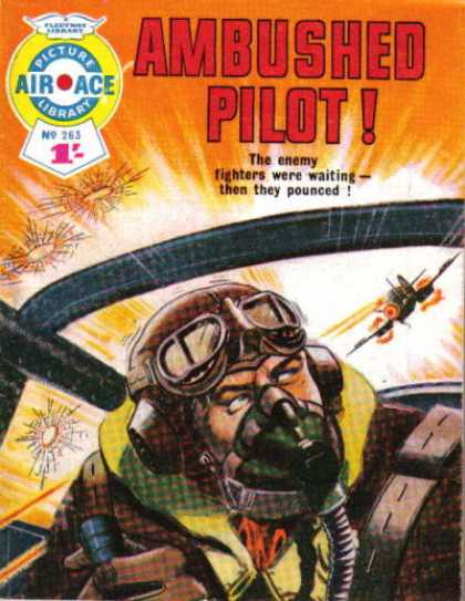Air Ace Picture Library 263