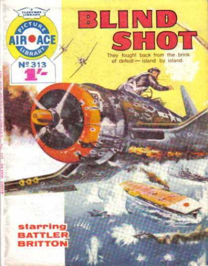 Air Ace Picture Library 313
