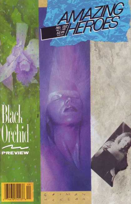 Amazing Heroes 152 - Dave McKean