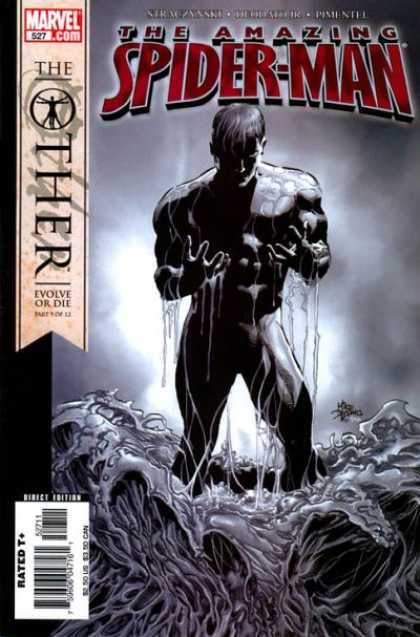 Amazing Spider-Man 527 - Other - Deodato Fiho
