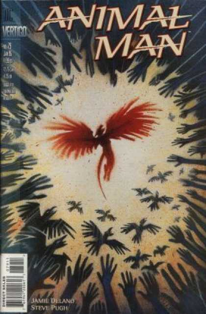Animal Man 79 - Vertigo - Birds - Hands - Circle - Jamie Delano U0026 Steve Pugh