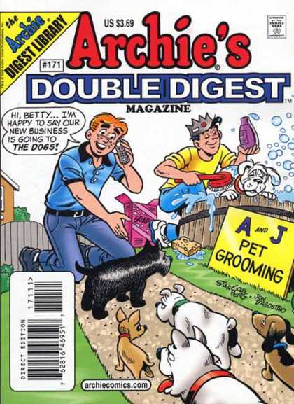 Archie's Double Digest 171