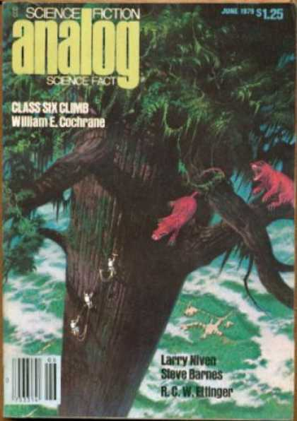 Astounding Stories 583 - Tree - Class Six Climb - Cochrane - Giant Tree - 125