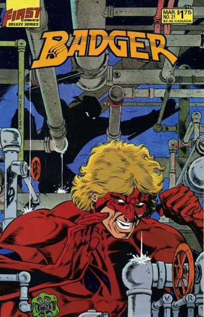 Badger 21 - Ninja In Background - Issue Number 21 - First Comics - Man Wearing Red Suit - Man Wearing Red Mask - Bill Reinhold