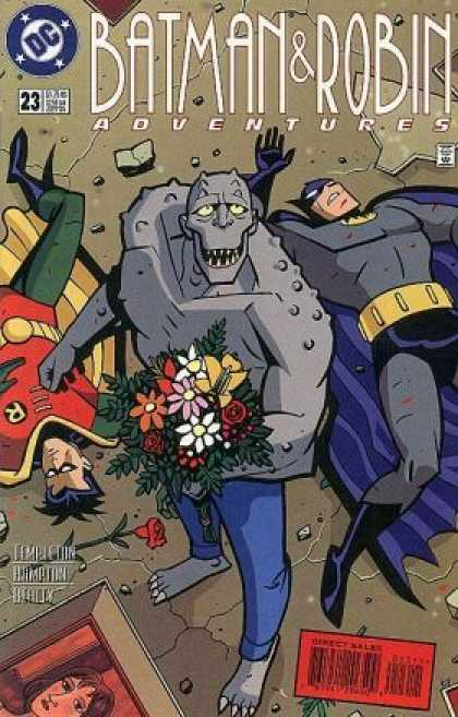 Batman & Robin Adventures 23 - Dc - Superhero - Flowers - Bouquet - Sidekick