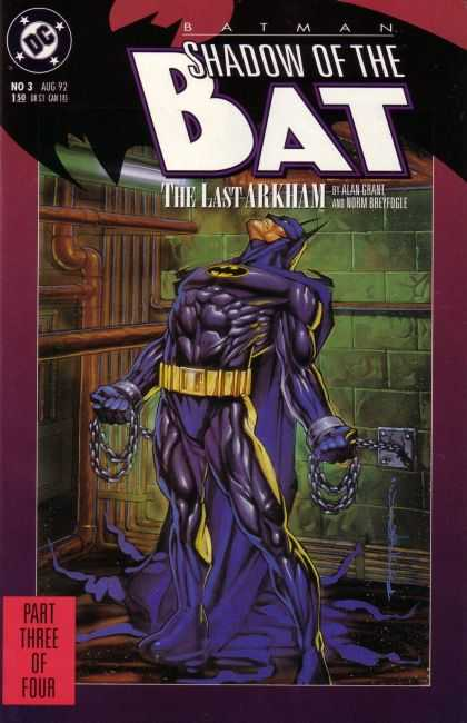 Batman: Shadow of the Bat 3 - Brian Stelfreeze