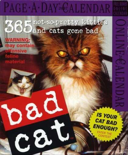 Bestsellers (2006) - Bad Cat Page-A-Day Calendar 2007 (Page-A-Day Calendars) by Workman Publishing Co
