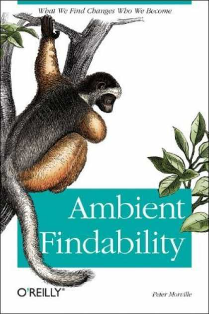 Bestsellers (2006) - Ambient Findability by Peter Morville
