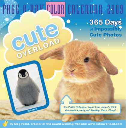 Bestsellers (2008) - Cute Overload Page-A-Day Calendar 2009 (Color Page-A-Day(r) Calendars) by Meg Fr