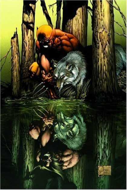 Bestselling Comics (2006) - Wolverine: Origins, Vol. 1: Born in Blood by
