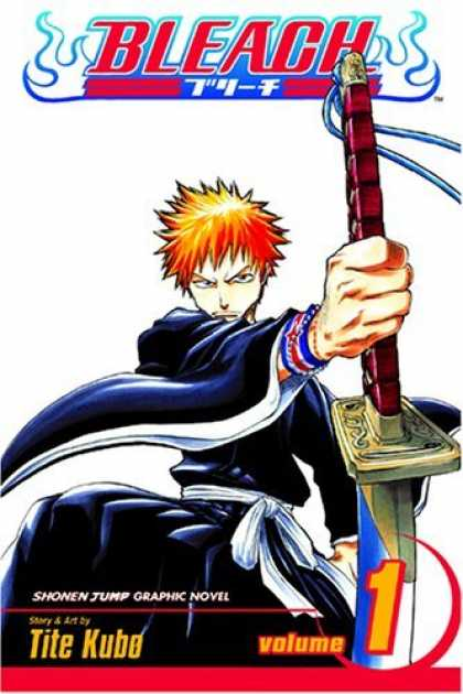 Bestselling Comics (2006) - Bleach, Vol. 1: The Death and the Strawberry by Tite Kubo