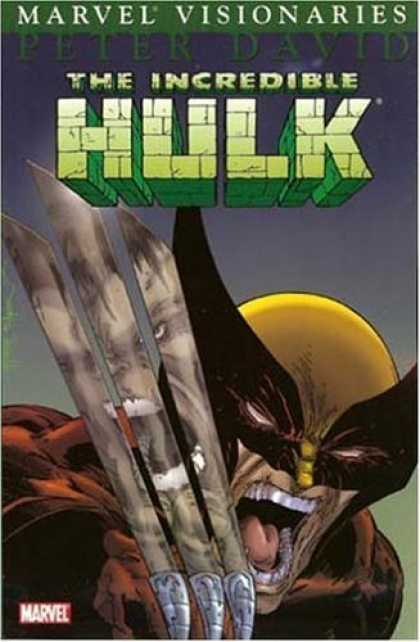Bestselling Comics (2006) - Hulk Visionaries (Peter David, Vol. 2) by Peter David