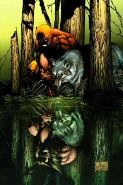 Bestselling Comics (2007) - Wolverine: Origins, Vol. 1: Born In Blood by Daniel Way