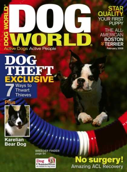 Bestselling Magazines (2008) - Dog World