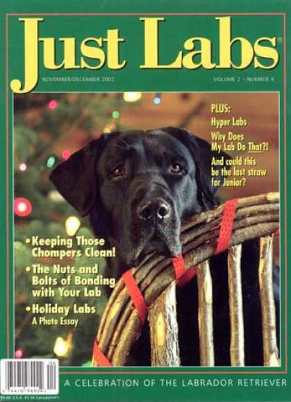 Bestselling Magazines (2008) - Just Labs