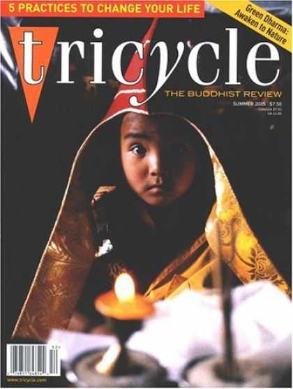 Bestselling Magazines (2008) - Tricycle : the Buddhist Review