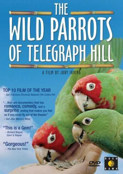Bestselling Movies (2006) - The Wild Parrots of Telegraph Hill