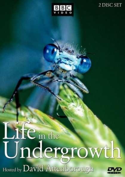 Bestselling Movies (2006) - Life in the Undergrowth