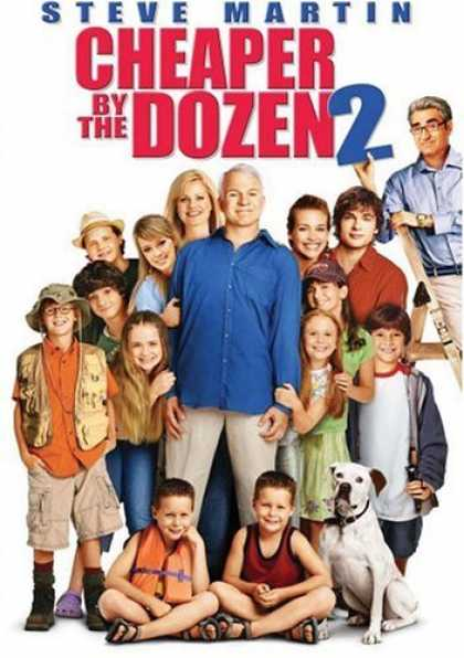 Bestselling Movies (2006) - Cheaper By the Dozen 2
