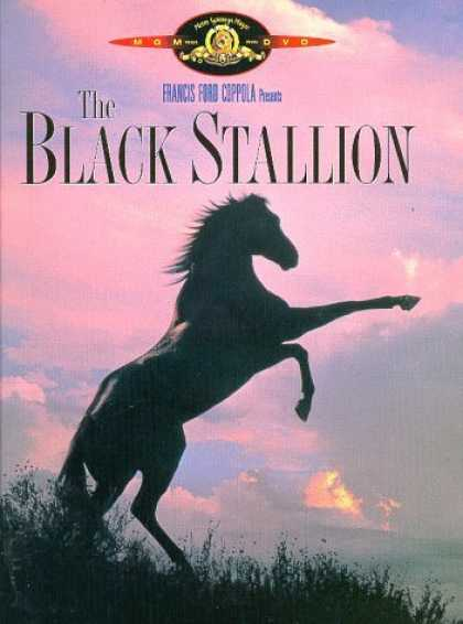 Bestselling Movies (2006) - The Black Stallion by Carroll Ballard