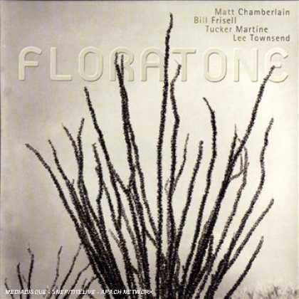 Bestselling Music (2007) - Floratone by Floratone