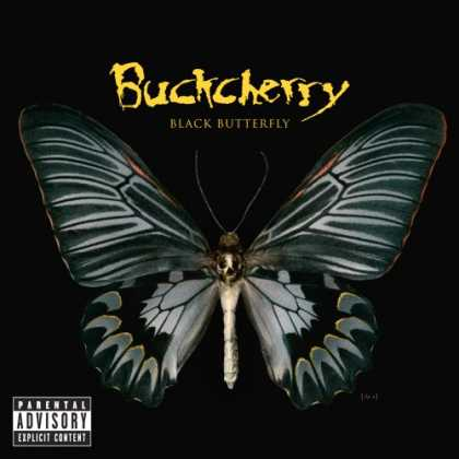 Bestselling Music (2008) - Black Butterfly by Buckcherry