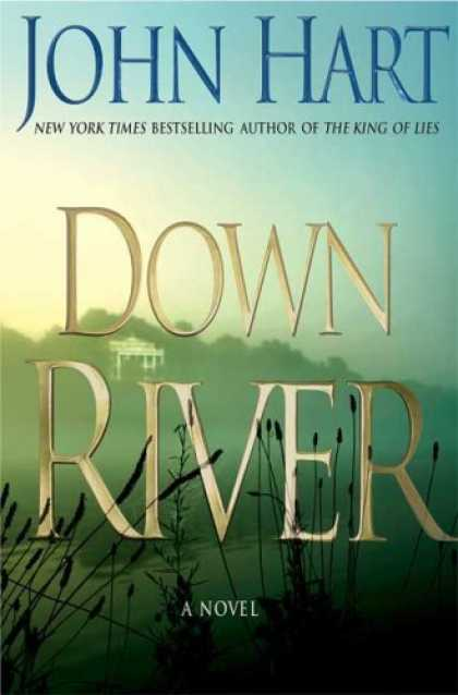 Bestselling Mystery/ Thriller (2008) - Down River by John Hart