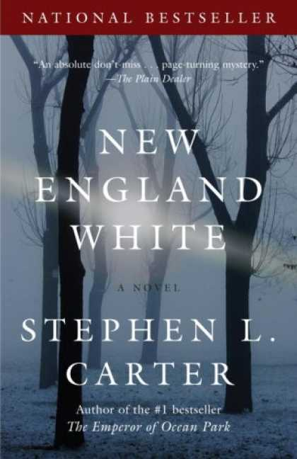 Bestselling Mystery/ Thriller (2008) - New England White (Vintage Contemporaries) by Stephen L. Carter