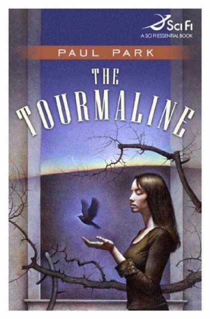 Bestselling Sci-Fi/ Fantasy (2006) - The Tourmaline by Paul Park