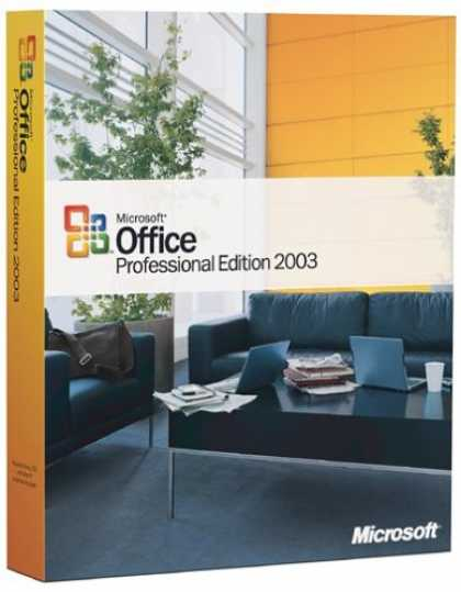 Bestselling Software (2008) - Microsoft Office Professional 2003 [OLD VERSION]