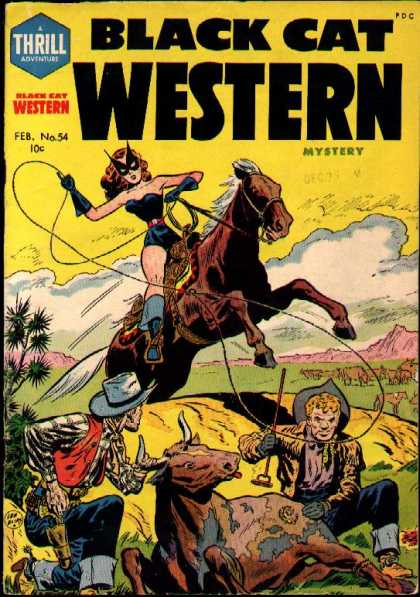 Black Cat 54 - Mystery - Horse - Men Branding Cow - Lasso - Female Hero