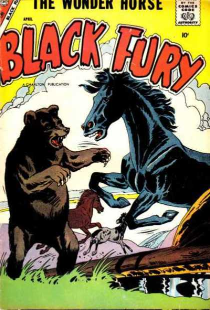 Black Fury 13 - The Wonder Horse - Black Horse - Bear - Clouds - Grass