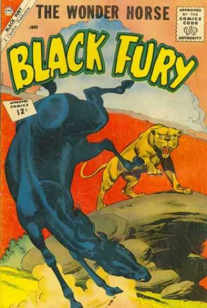 Black Fury 36 - Of Course Its A Horse - Here Kitty Kitty - Anger Has A Color And Apparently Its Black - Unleash The Fury - Who Will Win