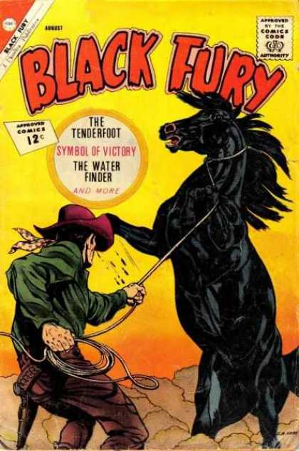 Black Fury 37 - Black Fury - The Tenderfoot - Water Finder - Black Horse - Victory Symbol