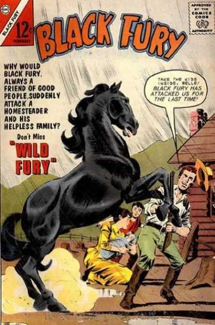Black Fury 40 - Homesteader - Chimney - Hat - Horse - Wild
