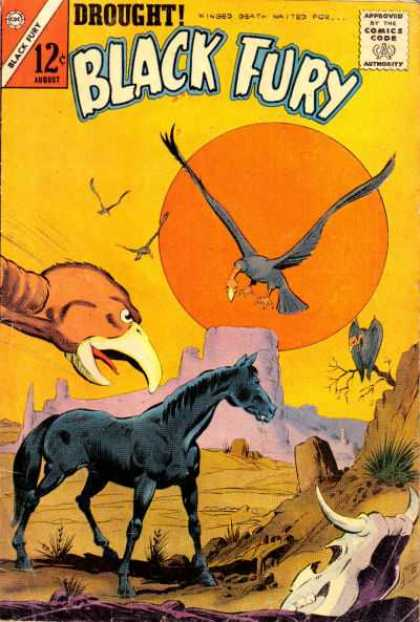 Black Fury 43 - Comics Code - Horse - Birds - Canyon - Drought
