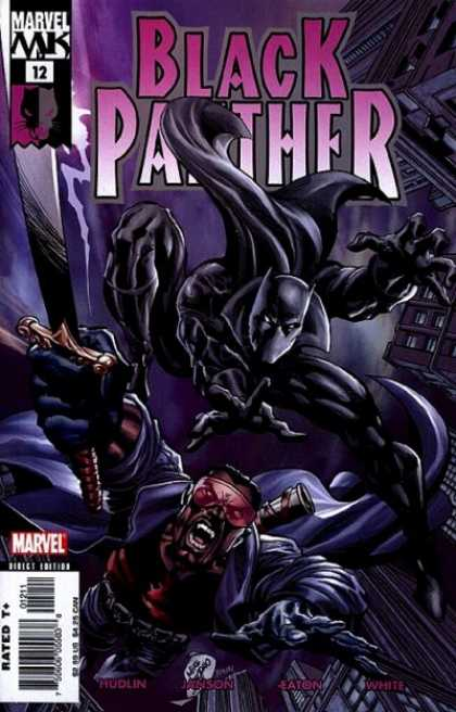Black Panther (2005) 12 - Deodato Fiho