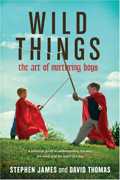 Books About Art - Wild Things: The Art of Nurturing Boys