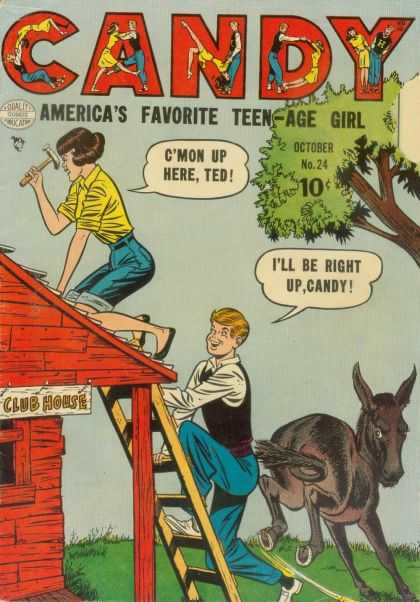 Candy 24 - Ted - Donkey - Teen-age Girl - Club House - Roofing