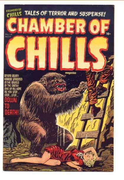 Chamber of Chills 14 - Tales Of Terror And Suspense - Monster - Woman - Man - Ladder