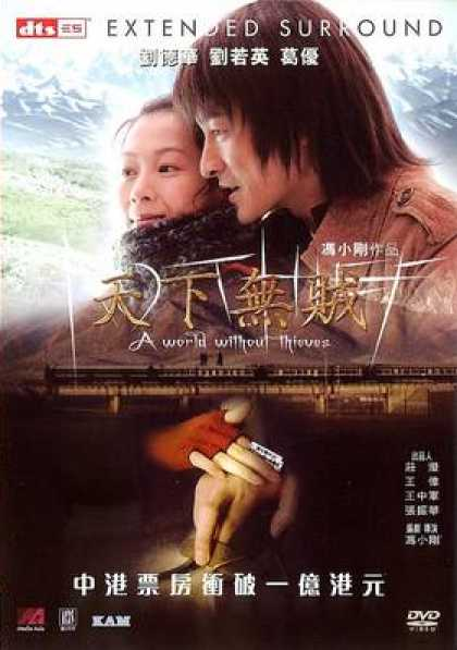 Chinese DVDs - A World Without Thieves