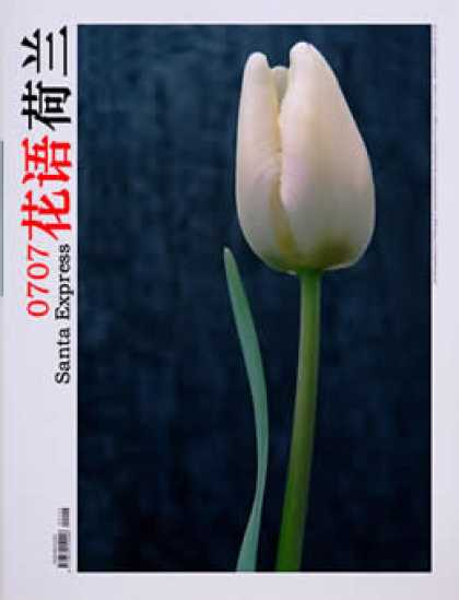 Chinese Ezines 7630 - Flower