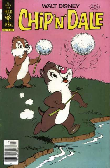 Chip 'n' Dale 63 - Squirrels - Running - Not Looking Where Hes Going - River - Splash