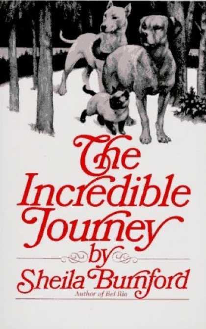 Classic Children's Books - The Incredible Journey