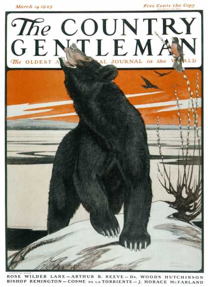 Country Gentleman - 1925-03-14: Bear and Robin Welcome Spring (Paul Bransom)
